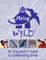 Flying WILD: An Educator's Guide to Celebrating Birds